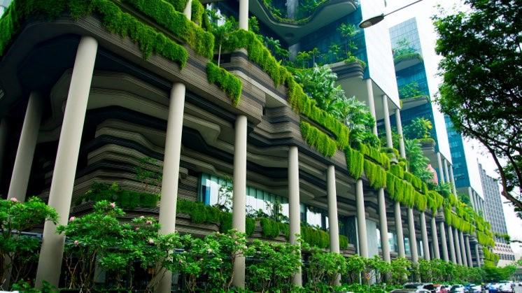 اجرای نمای سبز آریاز دیزاین